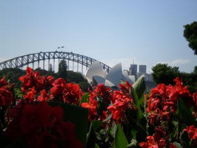 oper-bridge-und-botanischer-garten